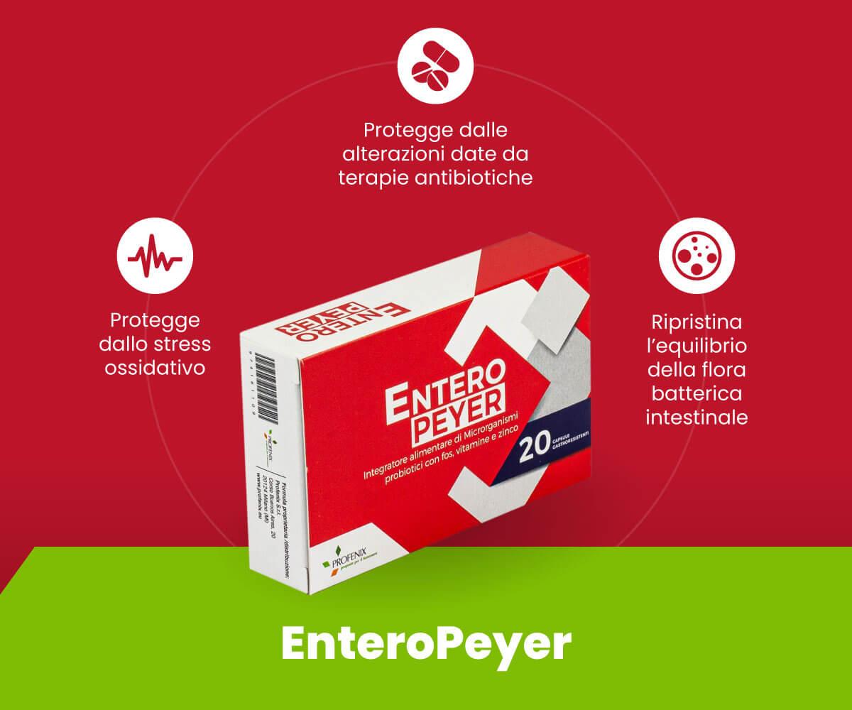 EnteroPeyer benefici e schema tecnico